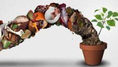 Gıda Atıklarını Değerlendirmenin Yolu: Evde Kompost Yapmak