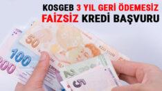 Türkiye'de KOSGEB 3 yil Geri odemesiz Faizsiz kredi
