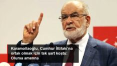 Temel Karamollaoğlu, Cumhur İttifakı'na ortak olmak için tek şart koştu