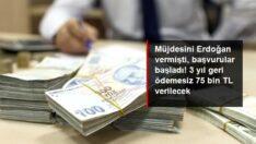 Türkiye'de 3 yıl geri ödemesiz 75 bin liraya kadar kredi verilecek
